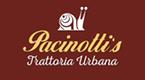 Shop Pacinotti's